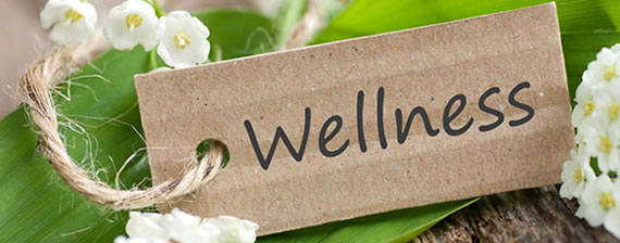 wellness ogomondo